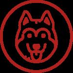 Dog Class Icon